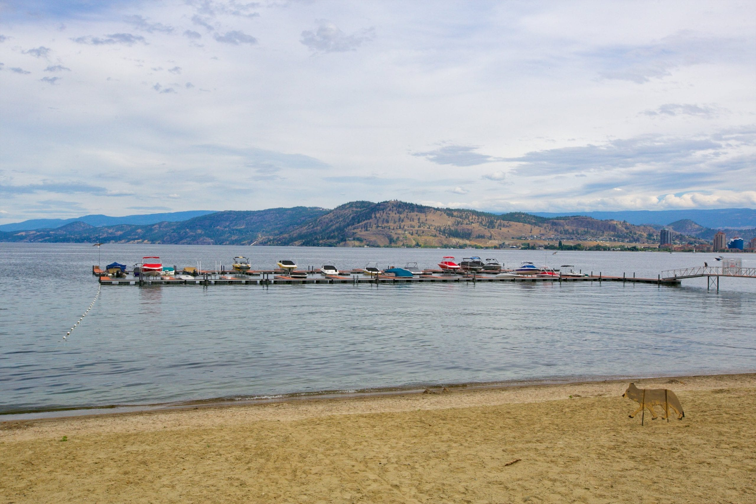 beach shot of west harbour marina with boats docked on the okanagan lake in full view of the mountains
