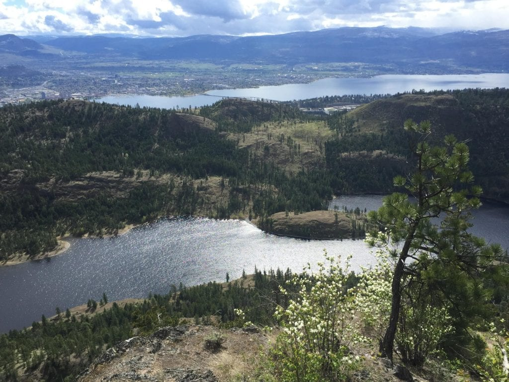 west kelowna hike spot beautiful overlooking the lake and the city of kelowna